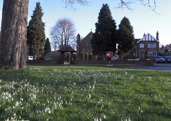 Snowdrops outside the Church